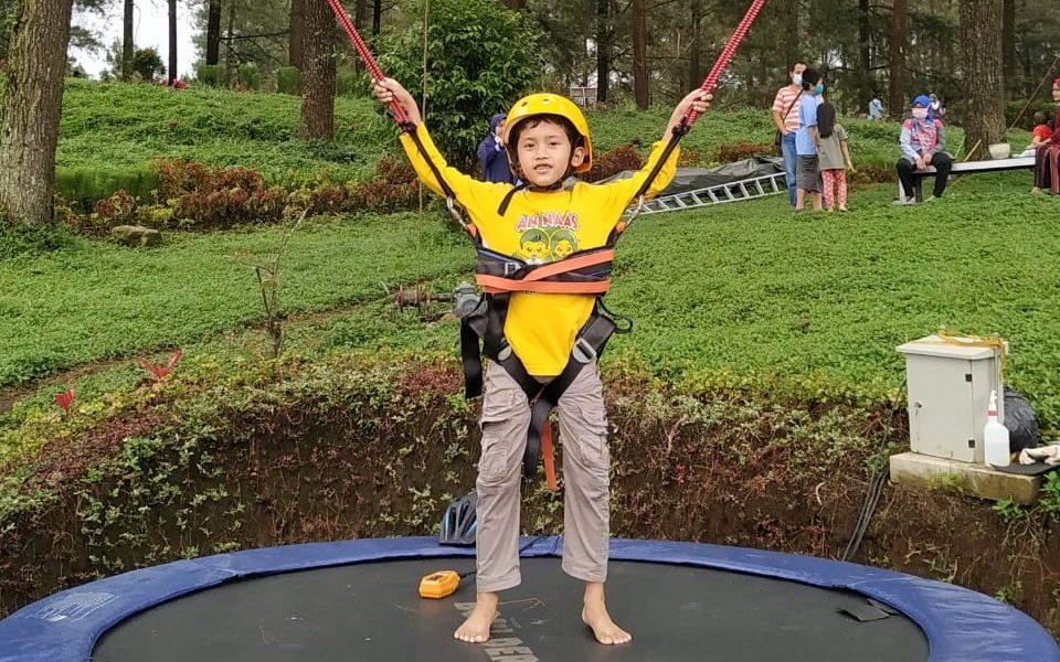 main trampoline di hutan pinus